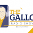 "Gallo hosts a ""Professor Roundtable"" with Matt Steffy and Jim Leggett"